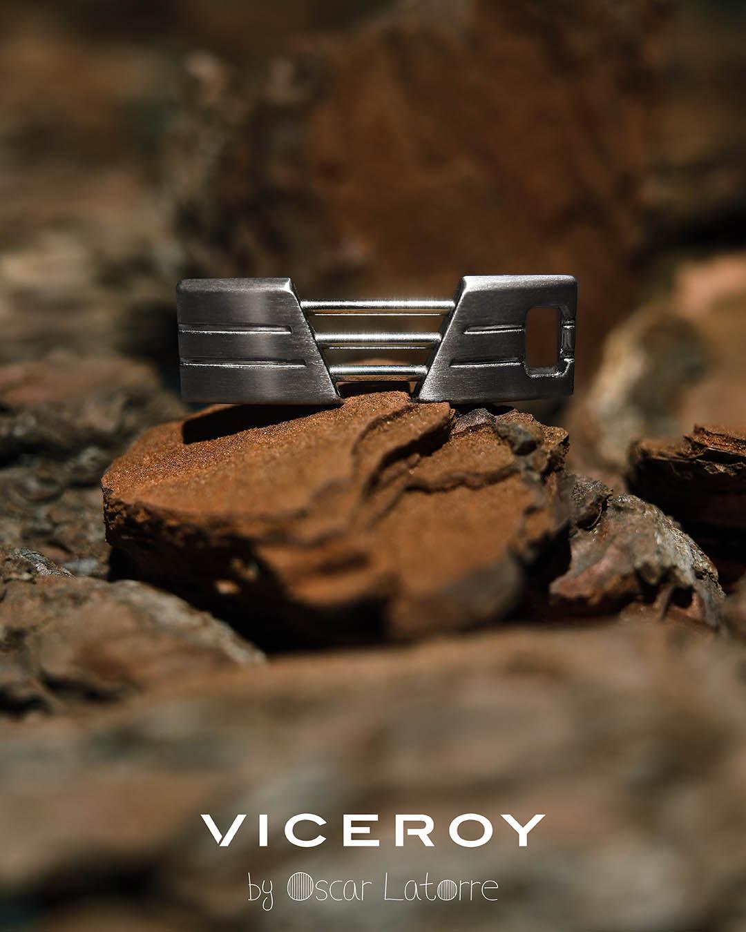 Viceroy by Oscar Latorre